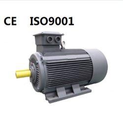 CE 50Hz a 60Hz IE2 IE3 Y2 y MS YB2 YD YEJ YVP YCT YC YL NEMA MS Alta Potencia del motor eléctrico motor de inducción de IP55 para el ventilador limpiador de bomba del compresor(0,18 KW-315KW).