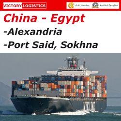 Agent d'expédition/service/d'expédition de fret de la mer à Alexandrie, Port Saïd, Ashdod, Lattaquié