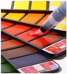 Peinture à l'Aquarelle solide portable défini avec le pinceau lumineux de couleur de pigment de peinture