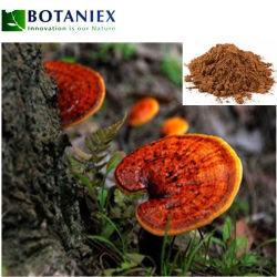 China Wholesale Extracto de Ganoderma lucidum/Lingzhi Rojo/Extracto de hongo Reishi Extracto 10: 1 20: 1