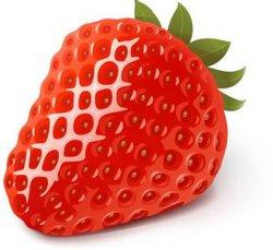 أصيل [بوبّلغم] [فب] عصير ضمّ بطيخة طيّبة مع حلوة مطّاطيّة توت أرض [إ-ليقويد] [فب] عصير [إ-جويس] قلم [فبوريزر] زيت لأنّ يصحّ [سغ] إلكترونيّة