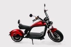 Cerchi in lega per il sedile lungo ricarica rapida del ciclo della batteria rimovibile per adulti Cityco elettrico spedizione online