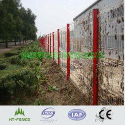 Сварной проволочной сеткой (HT-W-012)