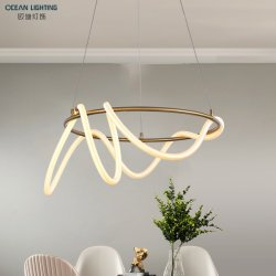 Voyant LED simple Fixtues PVC et pendentif en métal lampe de plafond