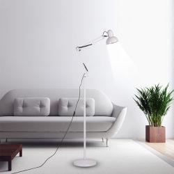 الديكور المعدني الكلاسيكي الصناعي مصباح الأرضية الدائمة مصباح رأسي (WH-VFL-10)