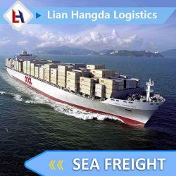 米国マレーシアオーストラリアナイジェリアフィリピンモルディブDDPの運送業者の海貨物へのYiwu中国