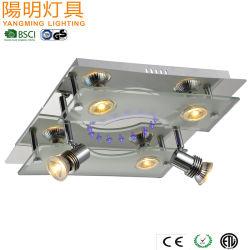 LED de gros plafond dans la chambre Light / prix bon marché plafond de verre lampe 30W