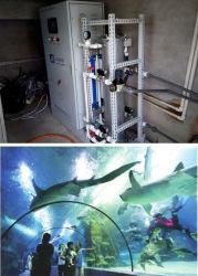바다 물 처리를 위한 오존 발전기