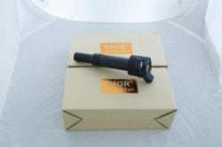 GM & Ford Bl35-12A375-Cc용 최초 점화 코일을 뜨거운 판매로 판매하십시오
