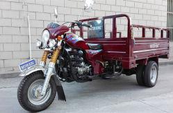 300cc Trike pesados, tres ruedas de agua de refrigeración de la motocicleta, triciclo de carga con cinco ruedas