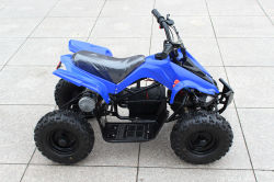 Hete Sale Buggy Car 500W 800W Mini ATV voor Sale