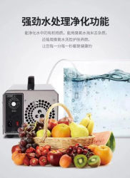 2021 220 V 110 V 5 g/h 10 g/h O3-ozongenerator waterzuiveraar Air Freshener Ozone sterilisator voor groenten