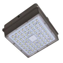 Алюминиевый корпус IP65 60Вт Светодиодные лампы станции, светодиодный индикатор навеса, светодиодный индикатор - взрывозащищенное с сертификат CE