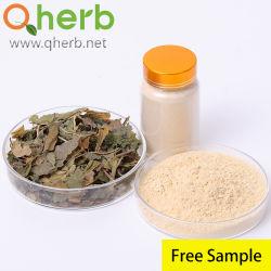 무료 샘플 인삼 잎 추출물 진노사이드 80% UV 수용성 건강 음식