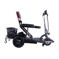 Elektromobilität Trike 250 Watt Scooter