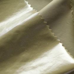 Tissu de nylon avec revêtement polyuréthane Wr lumineux de la Chine