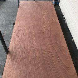 La puerta de madera contrachapada de Piel La piel de la puerta plana