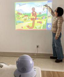 Interaktives elektrisches Whiteboard 30 150 Zoll IR-Technologie-intelligenter Vorstand