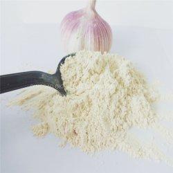 Melhor Preço de Shandong FDA de alta qualidade certificado Kosher Alho desidratado em pó