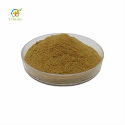 Polvere dell'estratto del fungo della criniera del leone organico del campione libero