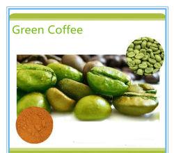 Prezzo di fabbrica 5 in 1 forte efficace bellezza che dimagrisce caffè