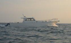 贅沢なスポーツ釣ヨットの漁船SUV46