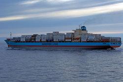 エジプトの海の貨物運送業者への国際海運の会社の船
