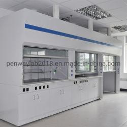 Armario de seguridad biológica de acero completo laboratorio de química Vitrina de gases