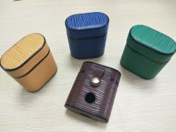 De kleurrijke Dekking van de Telefoon van het Leer voor Airpod met Zeer belangrijke Ketting voor Geval Airpods