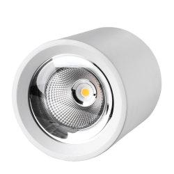 Résidentiel à gradation haute puissance 40W Downlight Led vérin monté en surface 20W 30W Lampe de projecteur au plafond