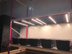 Growspec Innen500w UVwasserkultur-LED wachsen Lichter