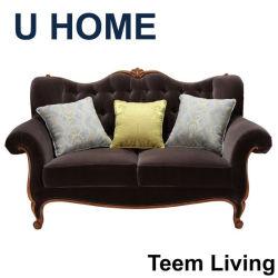 Nueva Colección nuevo diseño H522 estilo francés, muebles de salón estilo Dubai 2 Plazas sofá de la sala