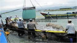 Hochwertiger tiefes Meer-HDPE Anti-Wind Netz-Fischen-Rahmen