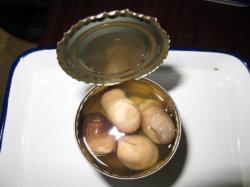 Haut de la paille de champignons en conserve de qualité Fine Foods