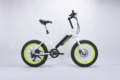 安い中国人48V 750W 26*4.0のインチの脂肪質のタイヤのLGのリチウム電池が付いている電気雪のバイク