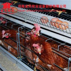 4 niveles de un tipo de jaula de la capa de pollo de granja avícola equipo