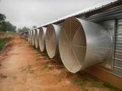 Система вентиляции для домашней птицы дома впускного воздуха