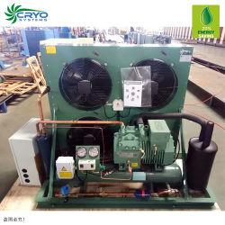 R407c Les unités de condensation de l'unité condenseur de baisse des prix dans les unités de réfrigération pour la vente