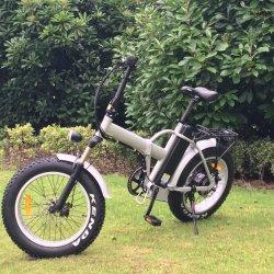elektrisches Fahrrad des faltbaren fetten Gummireifen-20inh