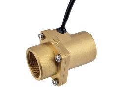 Interruttore di flusso magnetico della pompa ad acqua di alta qualità termoresistente dell'acciaio inossidabile Mr-4060-G3/4