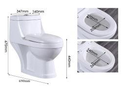 Sairiの優雅なデザイン一つの洗面所のジェット機の洗浄水戸棚の洗面所