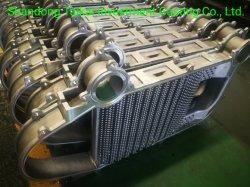 Calentamiento de la pared de radiadores de aluminio fundición a presión Fundición a presión
