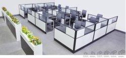 Instituto Profissional Fabricante Workstaion Office compartimentos de vidro