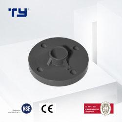 El abastecimiento de agua PN16 Adaptador de tubería de PVC de brida de plástico DIN/UPVC/CPVC/PPR/Plástico van de la brida de piedra