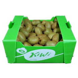 Fabricado en China Twinwall Kiwi de plástico hueco y cereza caso