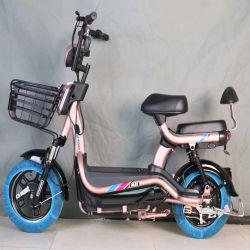 Bon marché et de Nice vélo électrique pour les adultes