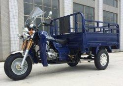 Trois roues gaz moto Tricycle avec 150cc moteur, la boîte de chargement pour le chargement, absorbeur de Dragon