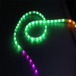 LED 수평한 밧줄 빛 옥수수 속 UV 안정 LED 밧줄 빛을%s 가진 360 도 공간 PVC