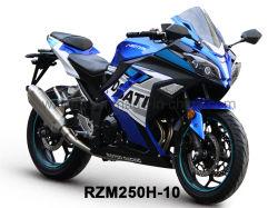 Originale Design Racing Motorcycle Rzm250h-10A con motori 150cc-350cc