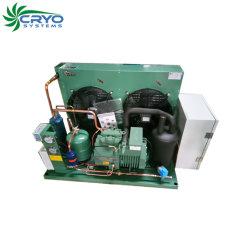 R134A de la conception du condenseur du condenseur du condenseur Bitzer congélateur de refroidissement